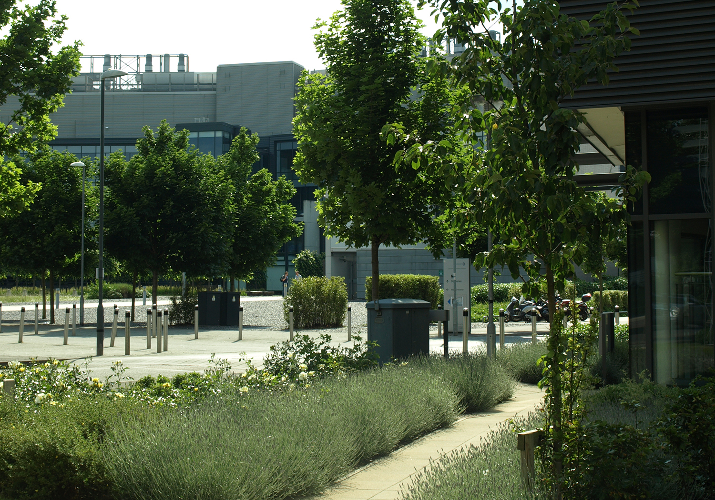 Projects-CareHospitality-Addenbrookes-PlantingPhoto-1500x1050