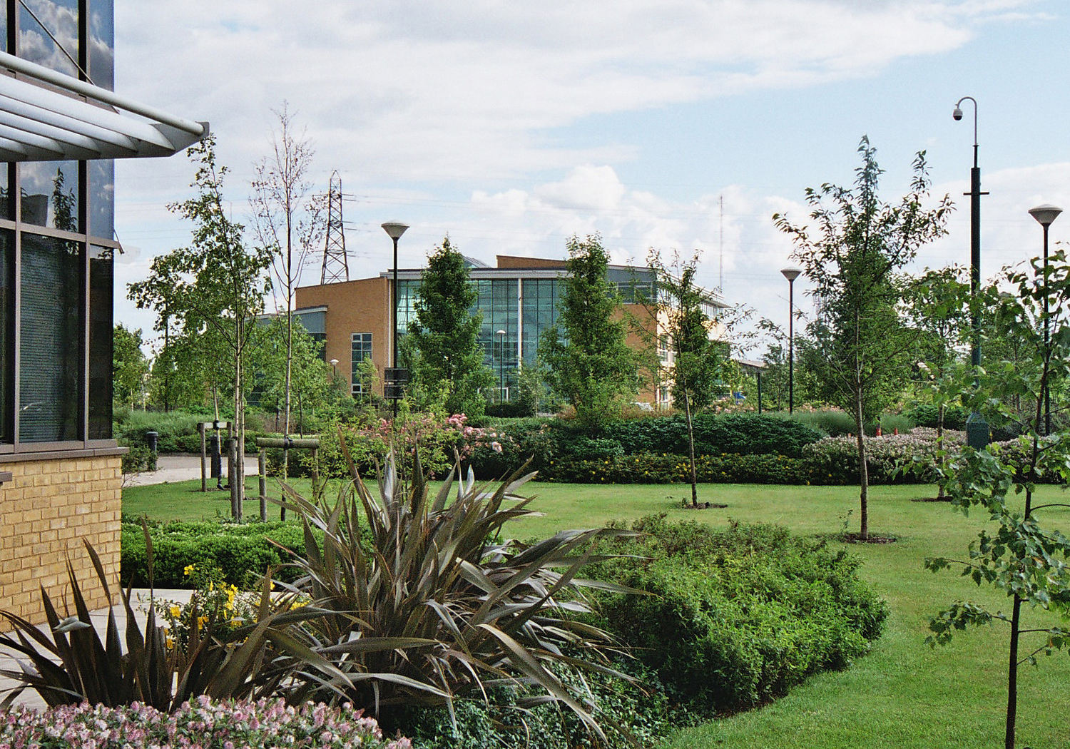Projects-CommInd-CambsSciencePark-OpenPlanting-1500x1050