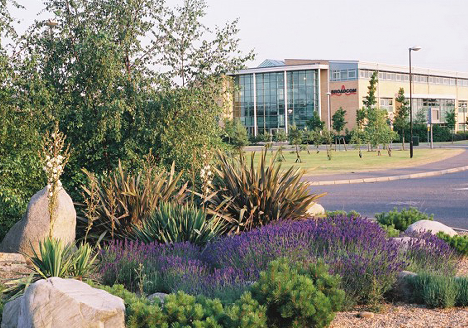 Projects-CommInd-CambsSciencePark-Planting-1500x1050