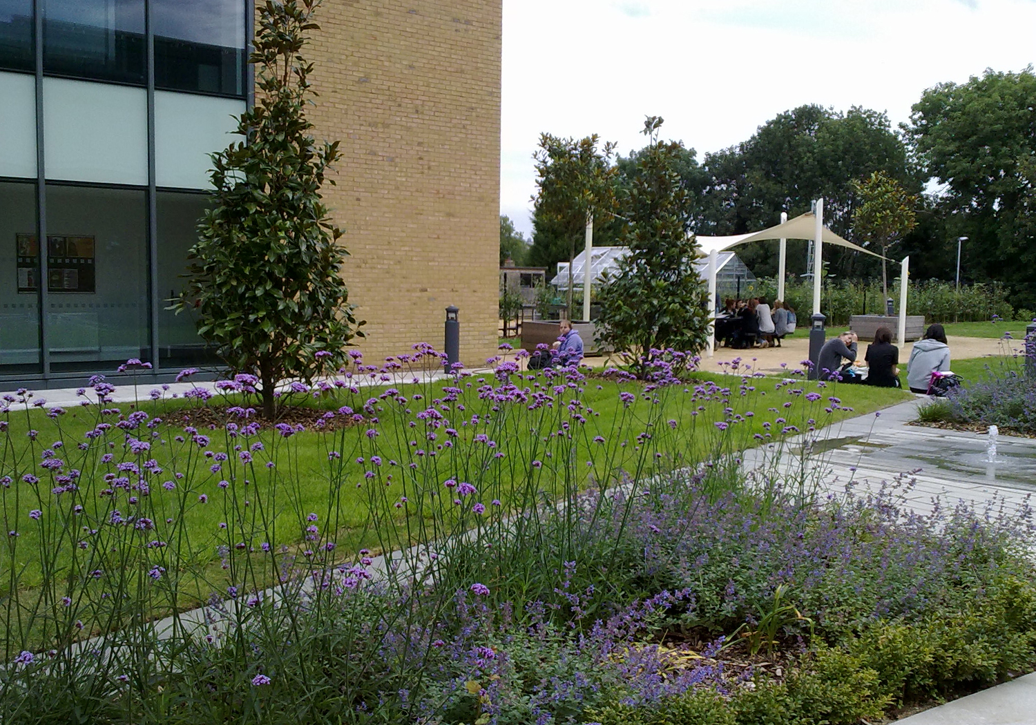 Projects-Education-EastSurreyCollege-PlantingWaterFeature-1500x1050