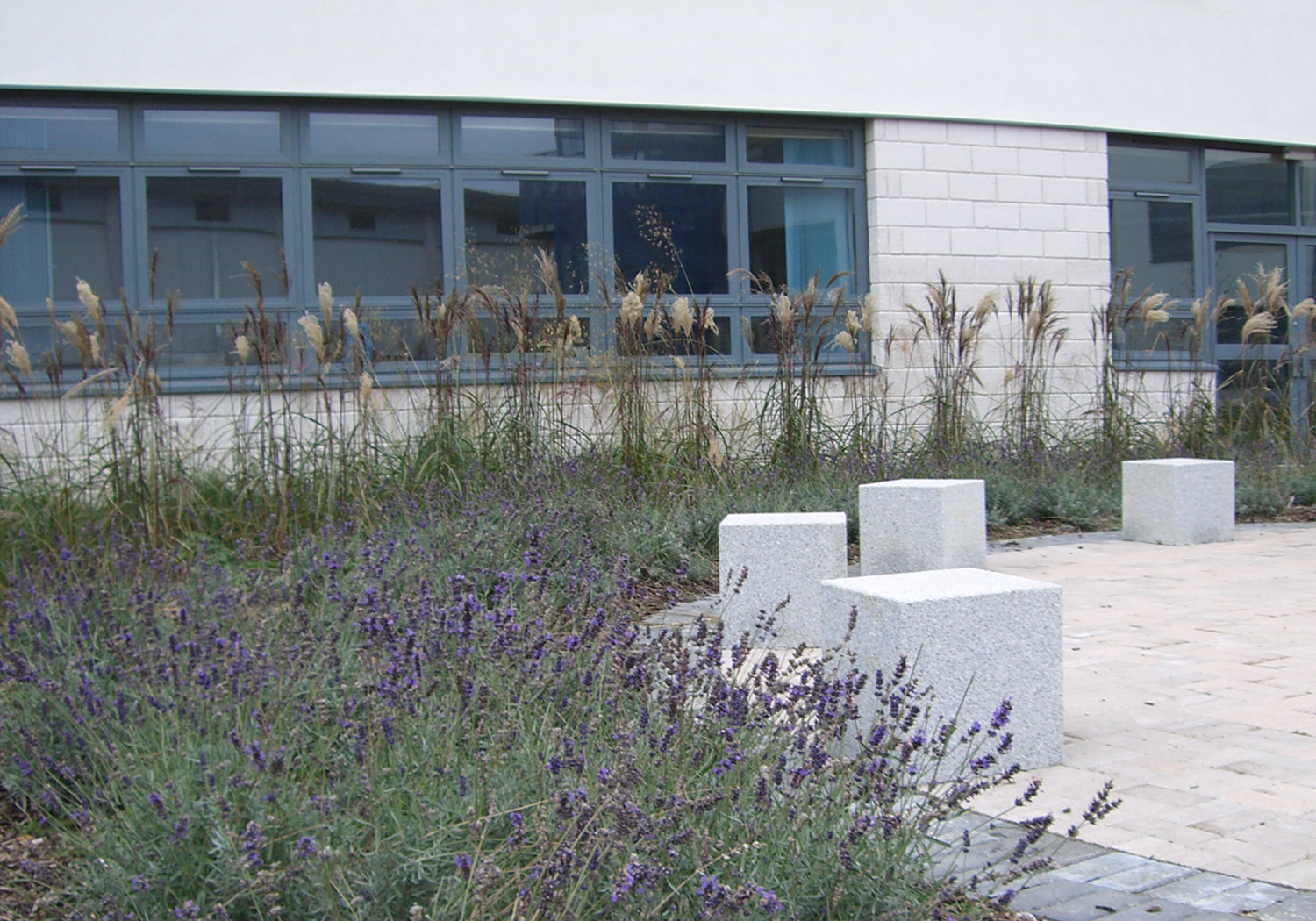 Projects-Education-Swindon-PlantingSeating-1500x1050