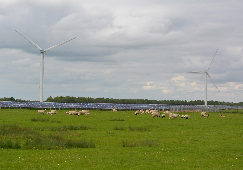 Projects-EnergyClimChg-ChelvestonRenewEnergy-Photo-1500x1050