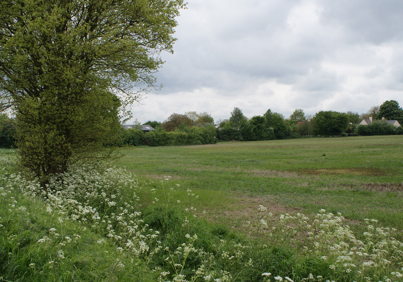 Projects-GardensEstates-HenryMoore-Field-1500x1050-V2
