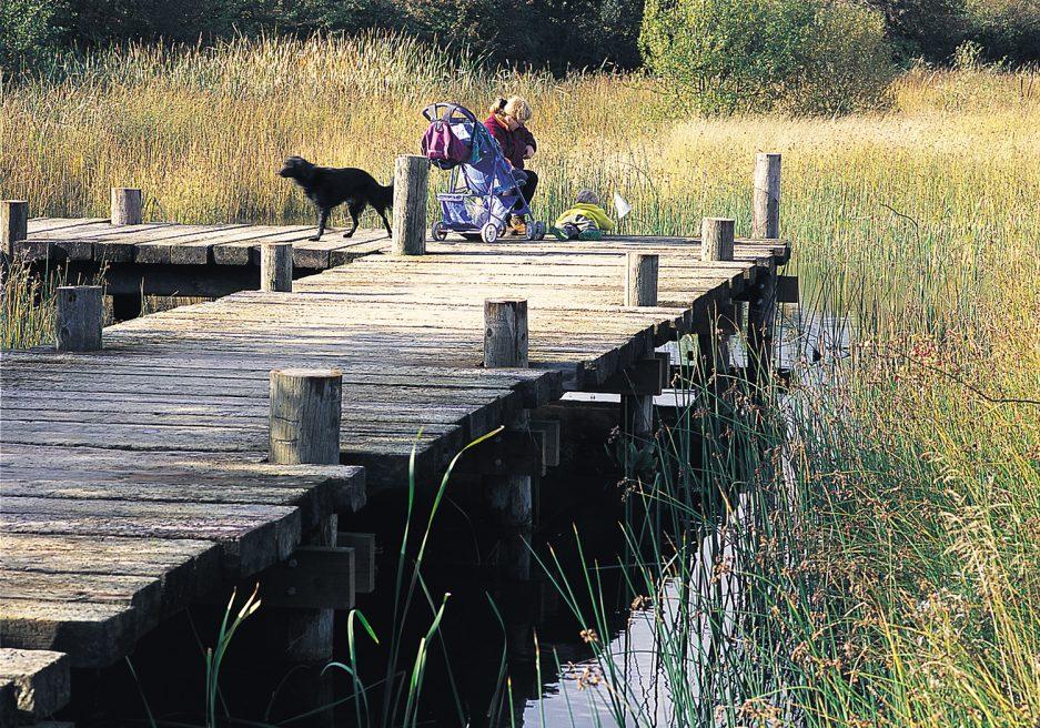Marston Vale Millennium Country Park, Bedfordshire