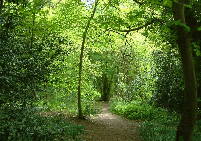 Projects-SpatialPlanning-Hertfordshire-Photo1-1500x1050