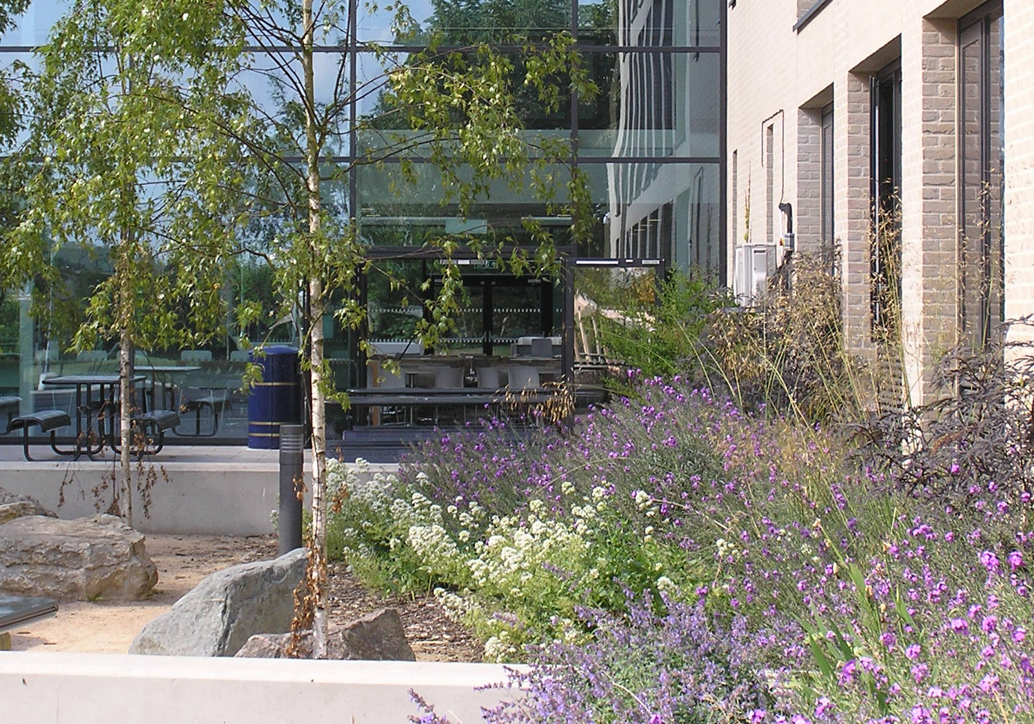 Projects-Education-Strood-Planting-1500x1050